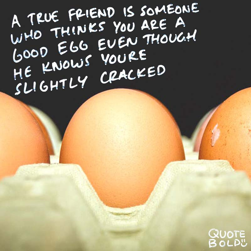 """best friend quotes - Bernard Meltzer """"A true friend is someone who thinks that you are a good egg even though he knows that you are slightly cracked."""""""