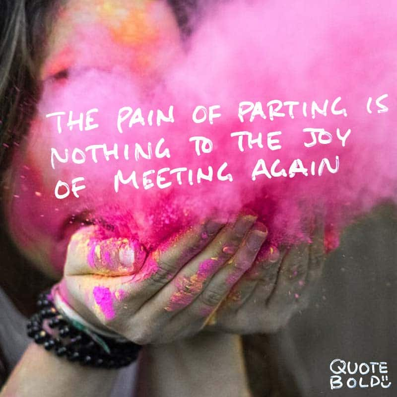 """best friend quotes - Charles Dickens """"The pain of parting is nothing to the joy of meeting again."""""""