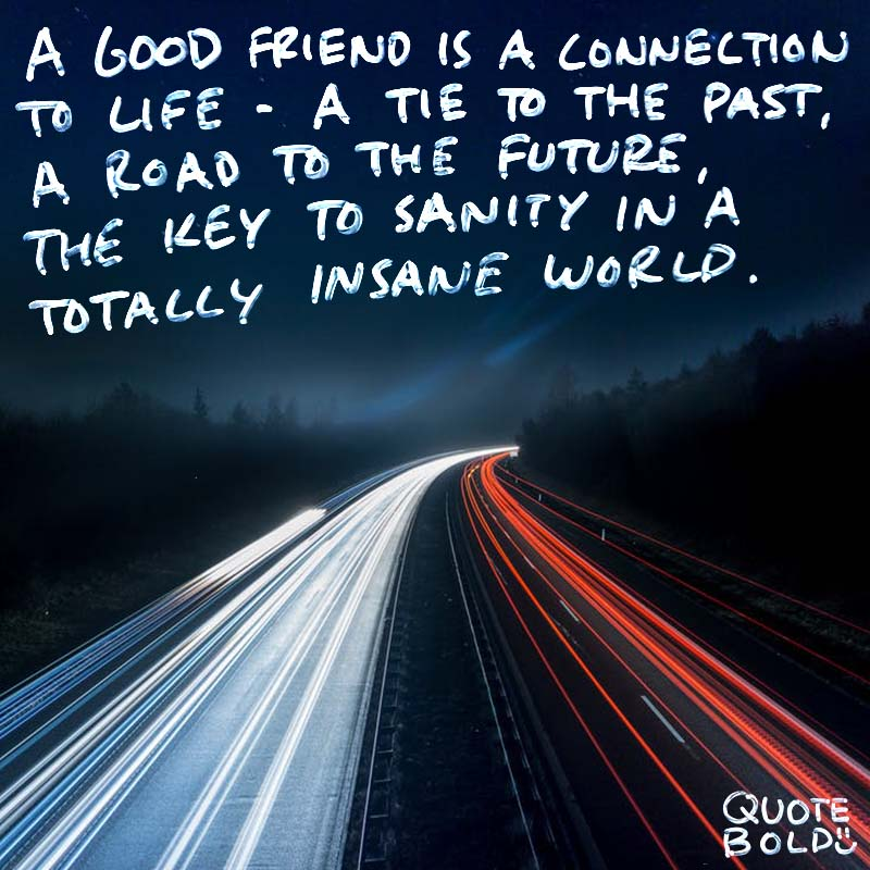 """best friend quotes - Lois Wyse """"A good friend is a connection to life - a tie to the past, a road to the future, the key to sanity in a totally insane world."""""""