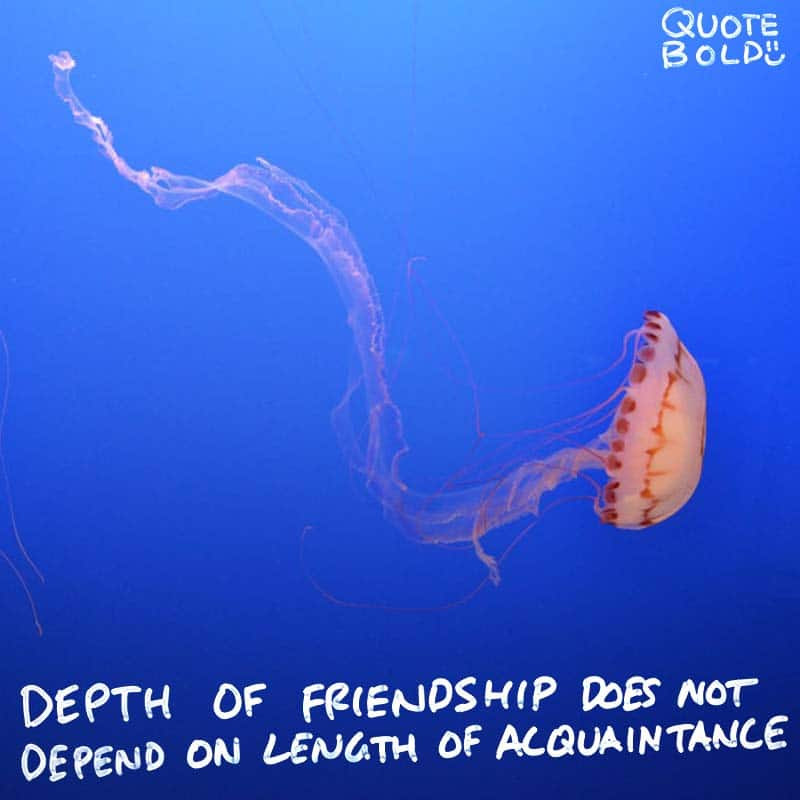 """best friend quotes image - Rabindranath Tagore """"Depth of friendship does not depend on length of acquaintance."""""""