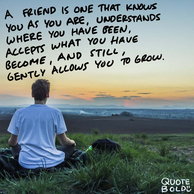 """best friend quotes - William Shakespeare """"A friend is one that knows you as you are, understands where you have been, accepts what you have become, and still, gently allows you to grow."""""""