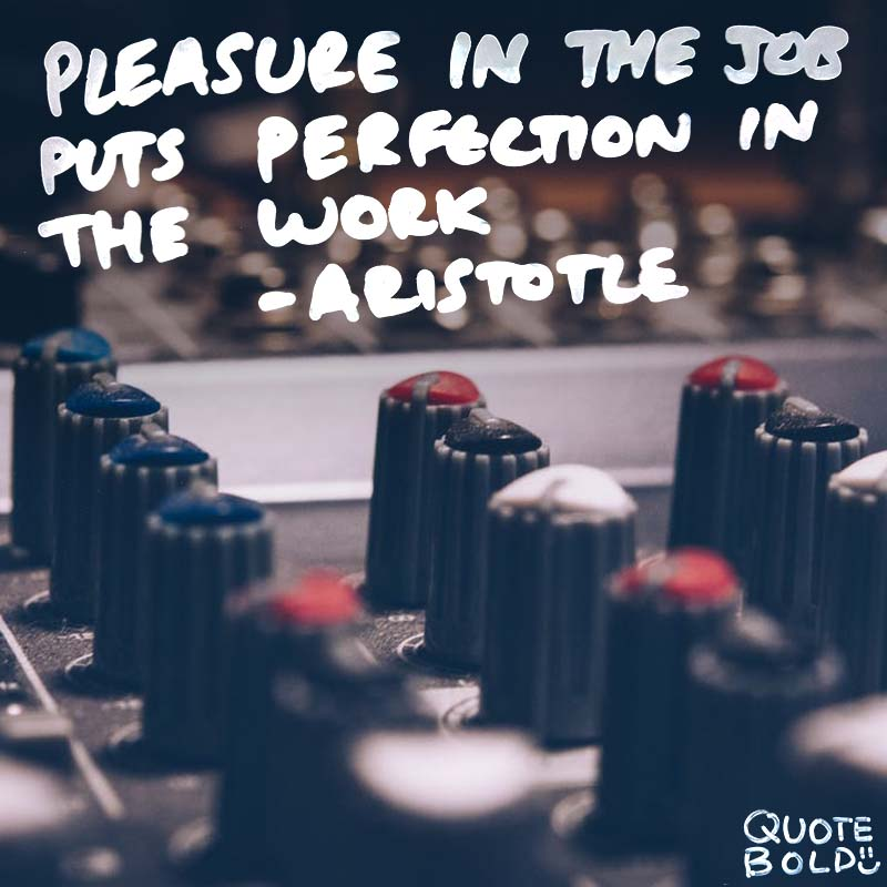 "inspirational quote for work - Aristotle ""Pleasure in the job puts perfection in the work."""