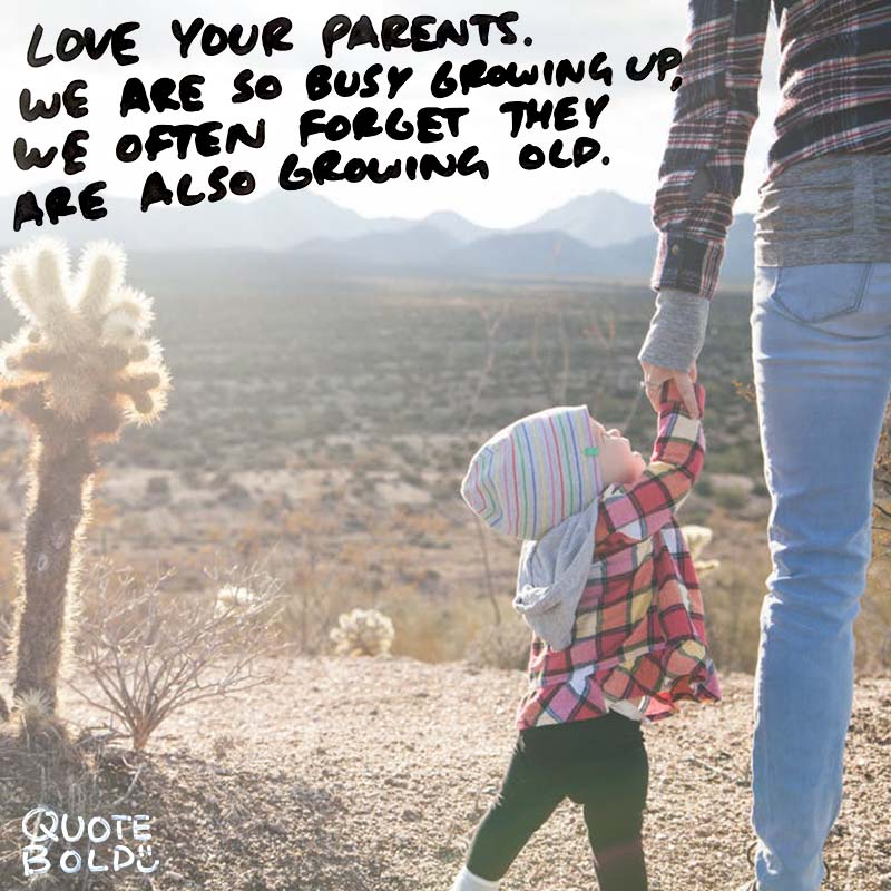 life quotes - love your parents