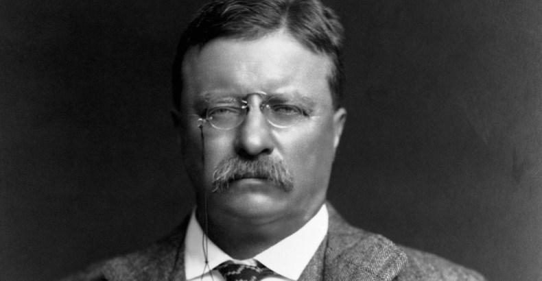 Theodore Roosevelt Quote 1024x532 - Theodore Roosevelt - Comparison - Quote