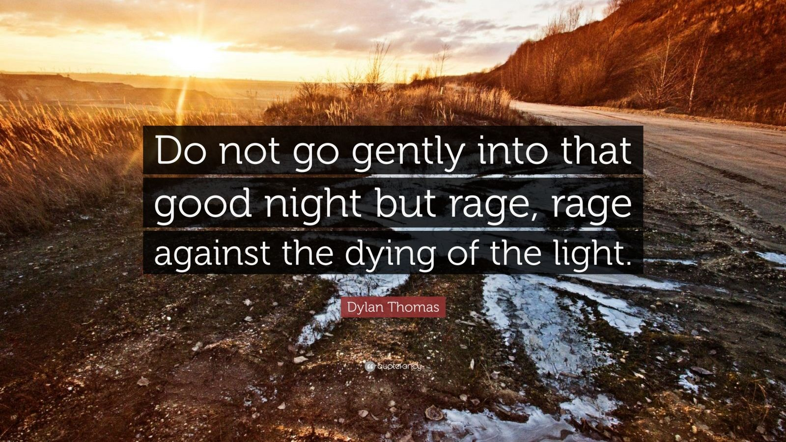 Rage Against Dying Light Dylan Thomas
