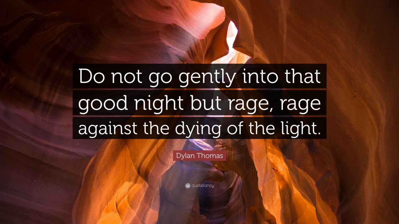 Meaning Rage Against Dying Light