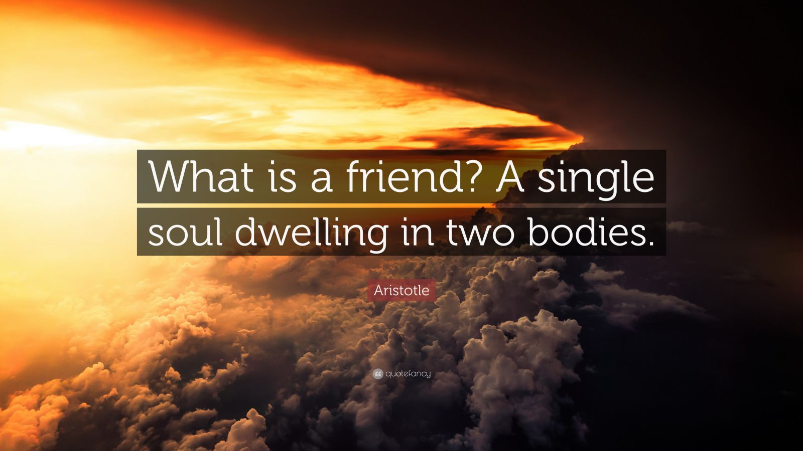 Aristotle Quote What Is A Friend A Single Soul Dwelling In Two Bodies 13 Wallpapers