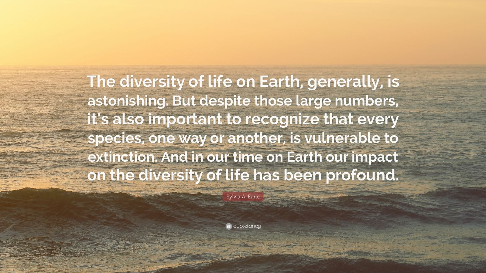 Sylvia A Earle Quote The Diversity Of Life On Earth