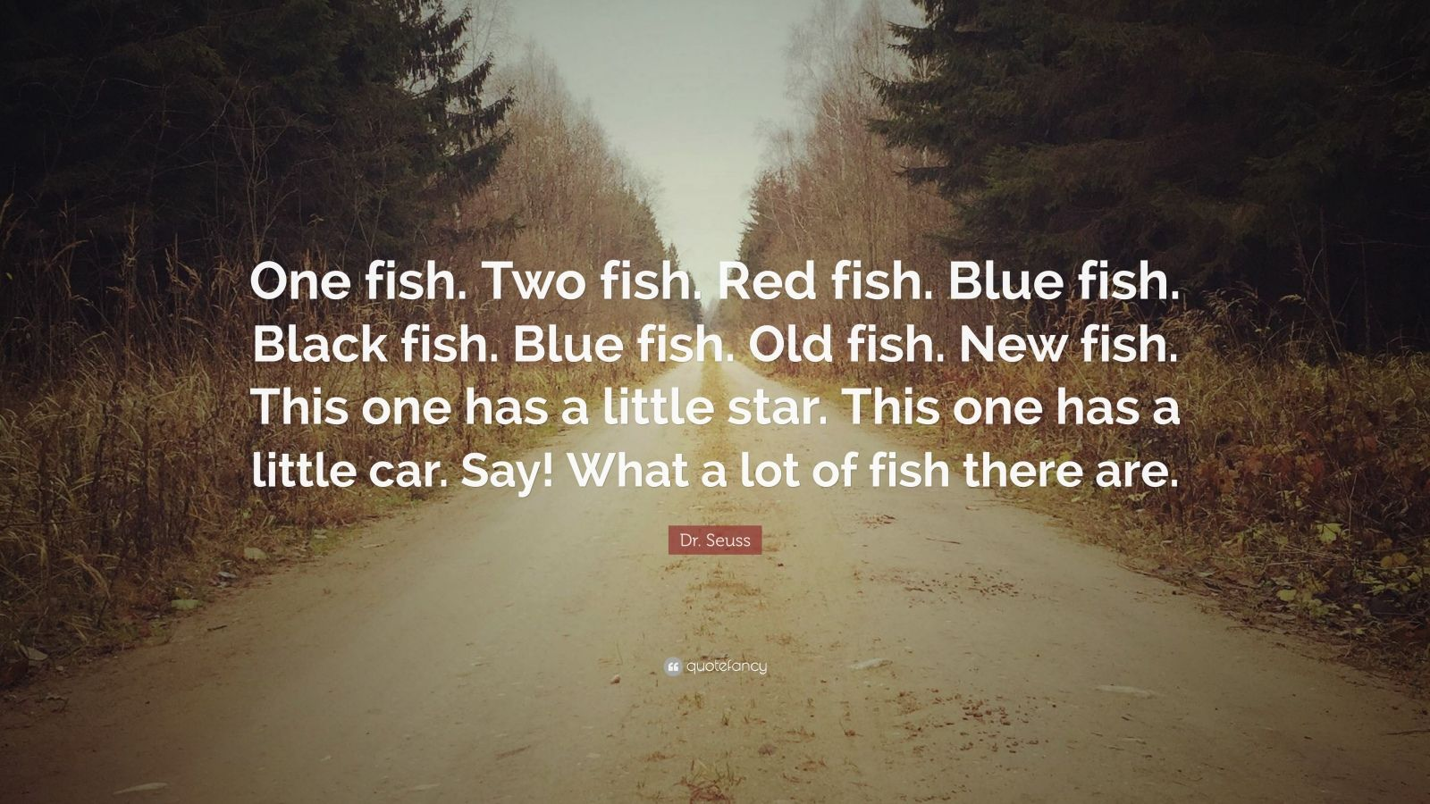 Dr Seuss Quote One Fish Two Fish Red Fish Blue Fish