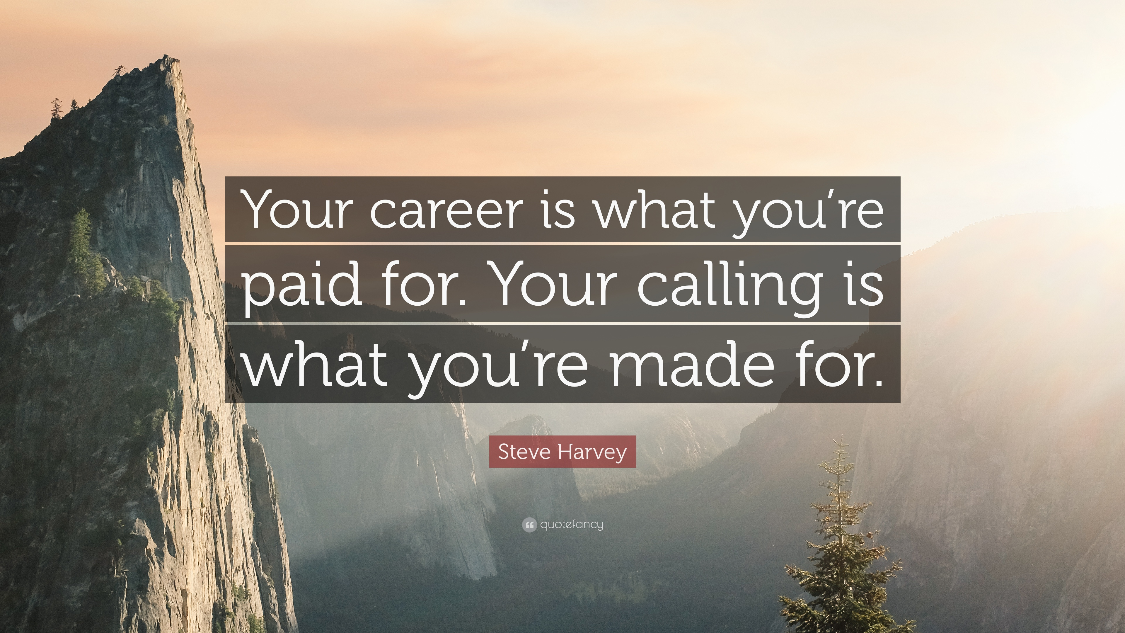 Steve Harvey Quote Your Career Is What You Re Paid For Your Calling Is What You Re Made For