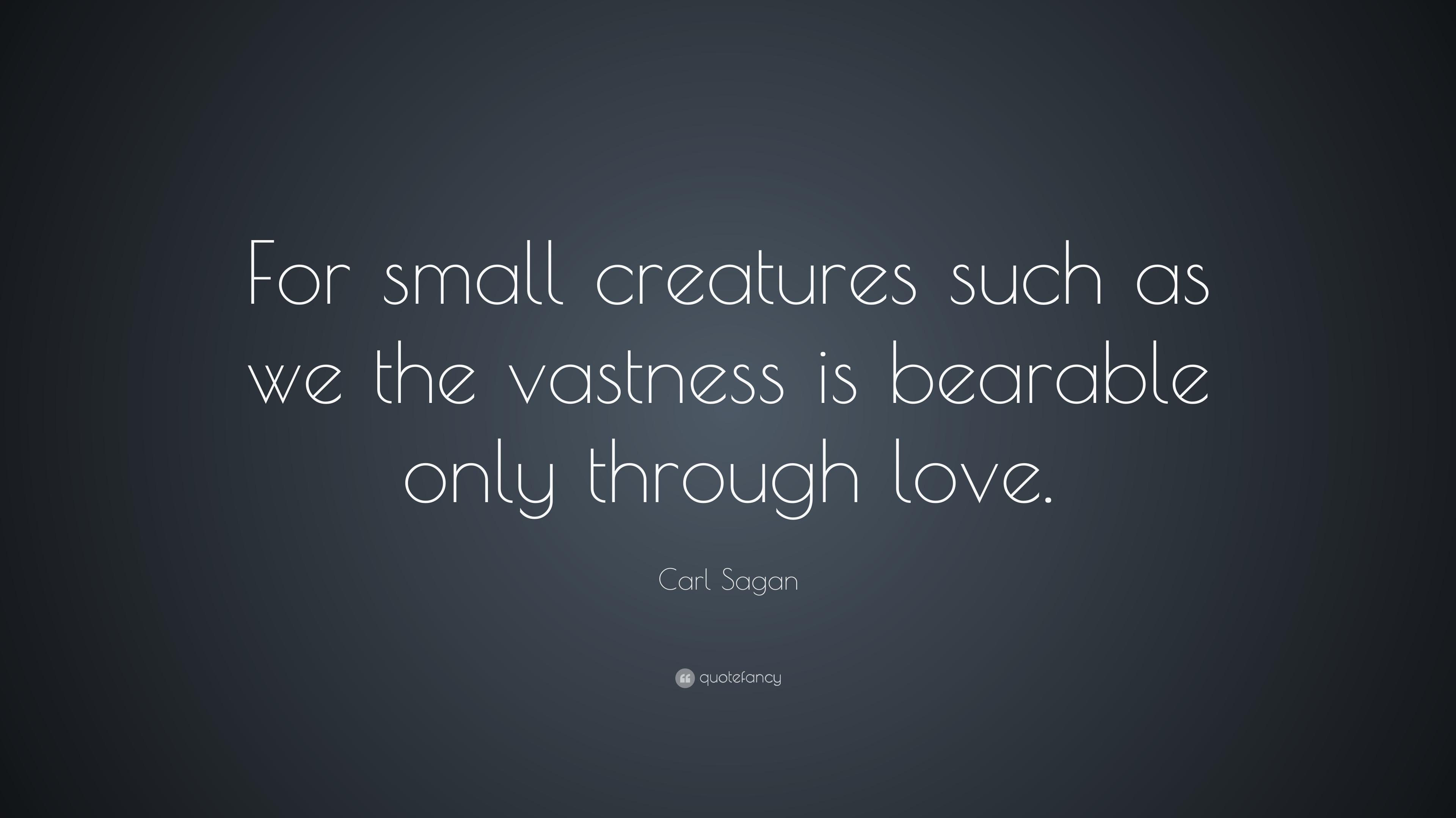 Carl Sagan Quote Love