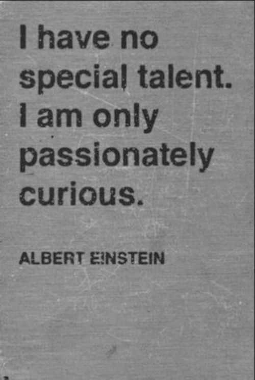 albert einstein quotes education