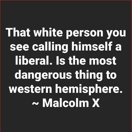 malcolm x quotes about education