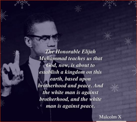 malcolm x most famous quotes