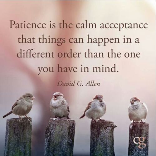 patience and kindness quotes