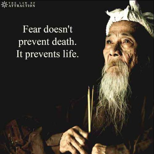 owl quotes wisdom