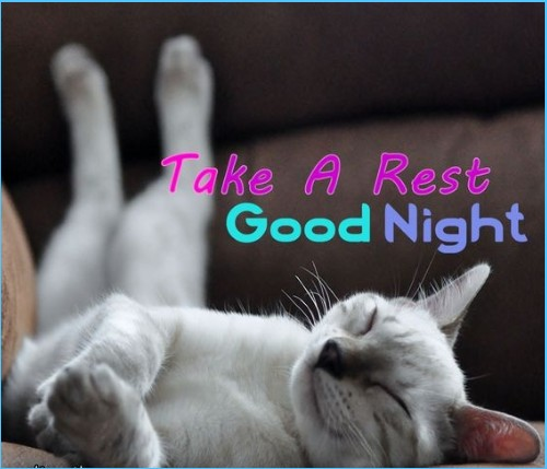 Best good night quotes with pictures