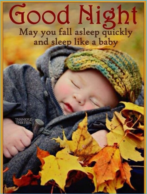 Sweet dreams and good night quote