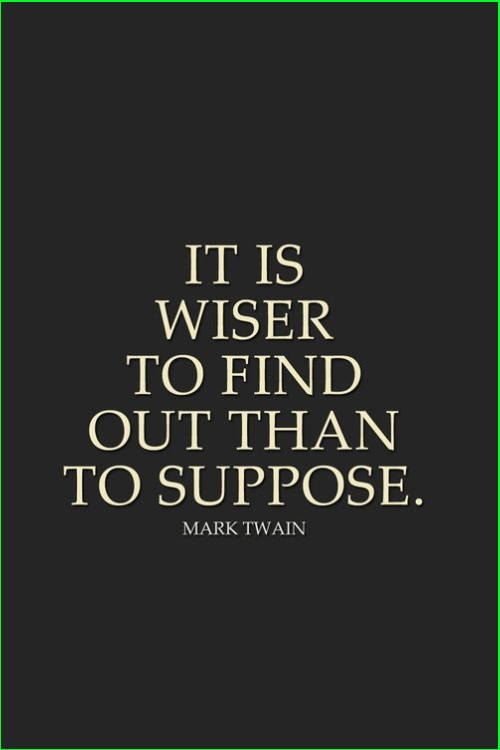 mark twain quote wise