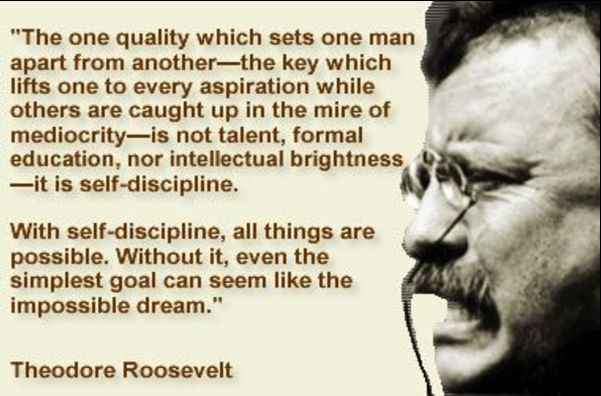 quotes by theodore roosevelt