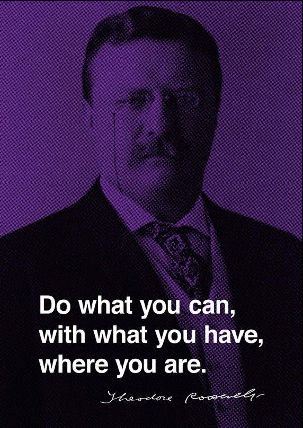 theodore roosevelt quotes president