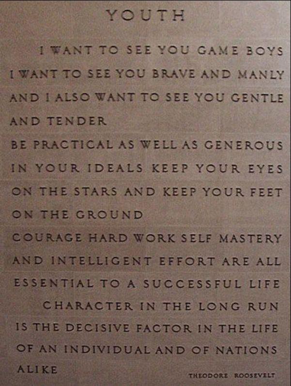 theodore roosevelt quotes patriotism