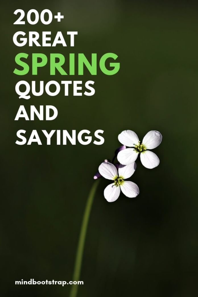 200+ Great Spring Quotes & Sayings - MindBootstrap