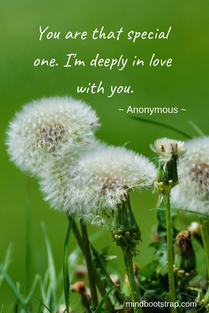 Short Romantic Quotes