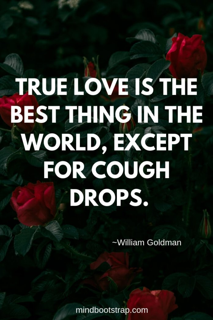 True Love Quotes & Sayings For Him or Her | True love is the best thing in the world, except for cough drops.
