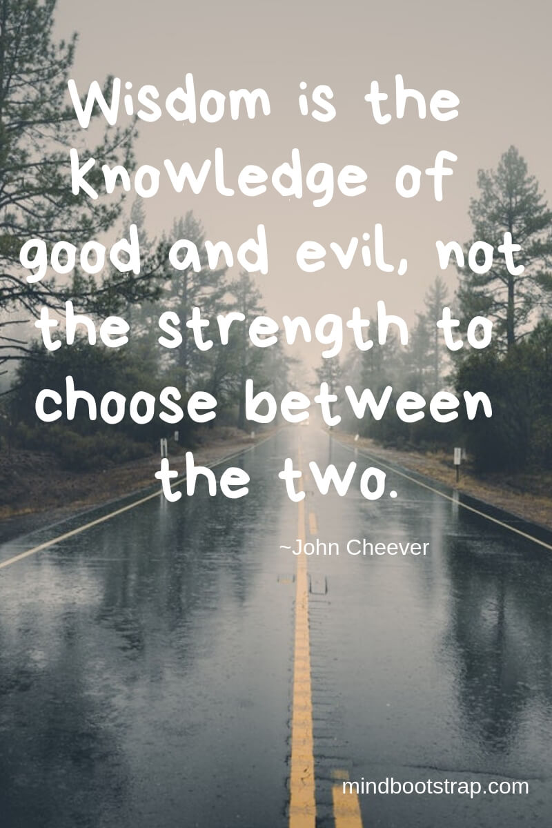 Wisdom is the knowledge of good and evil, not the strength to choose between the two. ~John Cheever