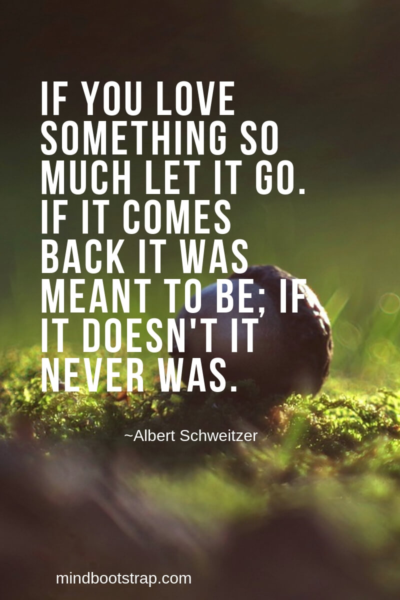 31+ Best Letting Go of Love Quotes and Sayings That Help You ...
