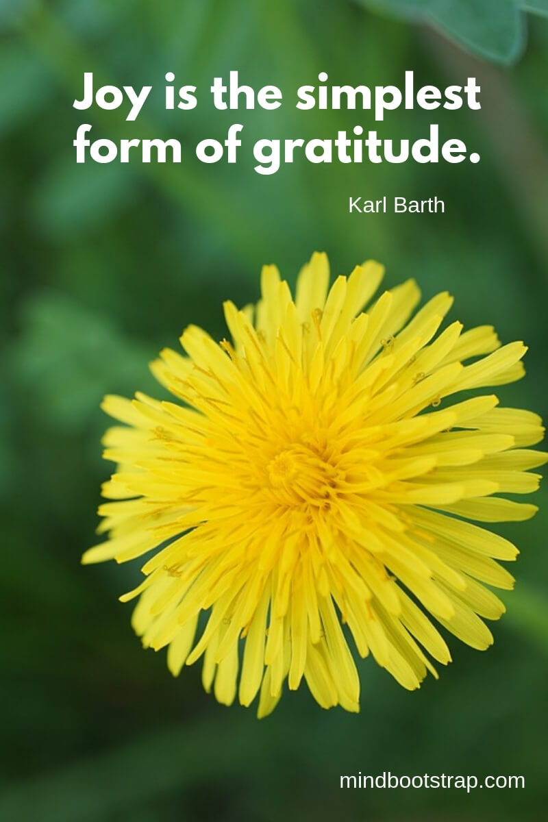 short gratitude quotes - Joy is the simplest form of gratitude. ~Karl Barth