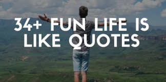 best life is like quotes