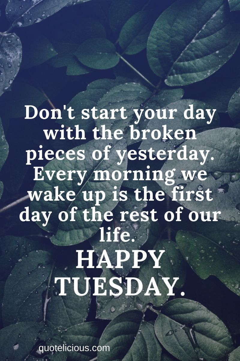 inspiring tuesday quotes and sayings images quotelicious