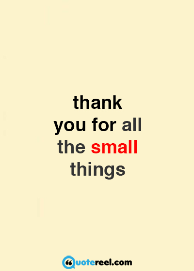 Appreciation Thank Quotes You Sayings