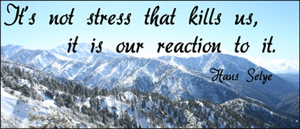 It's not stress that kills us it is our reaction to it