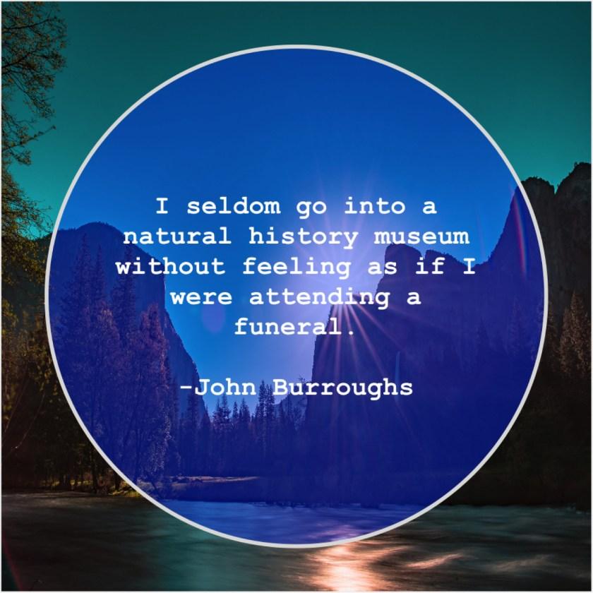 John Burroughs – I seldom go into a… – Quote Pals