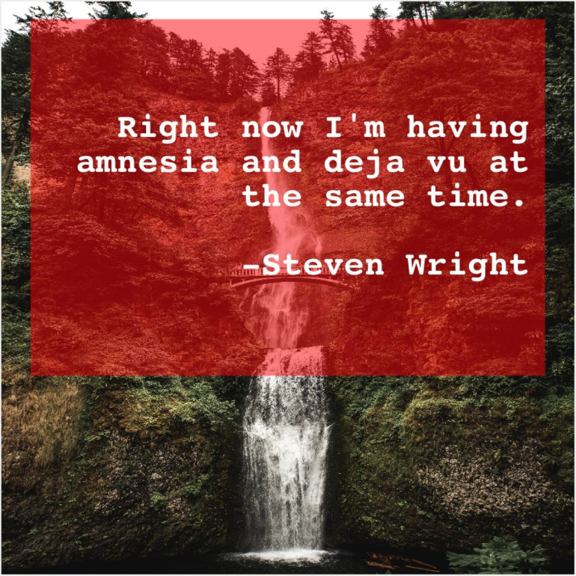 Steven Wright – Right now I'm having amnesia… – Quote Pals
