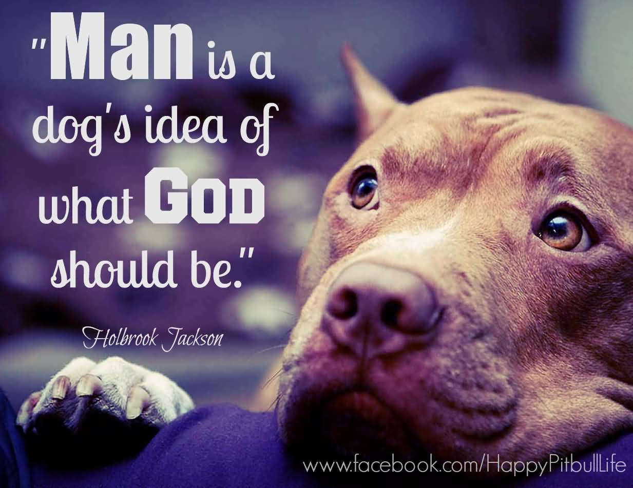 Dog Love Quotes Pitbull Dog Love Quotes Meme Image 20  Quotesbae