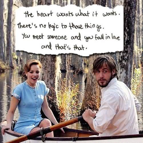 Quotes Notebook Inspiration 25 The Notebook Quotes Sayings Images And Photos  Quotesbae