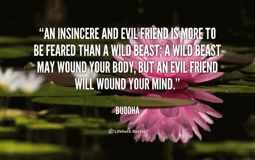 Buddha Quotes About Friendship Prepossessing Buddha Quotes About Friendship 19  Quotesbae