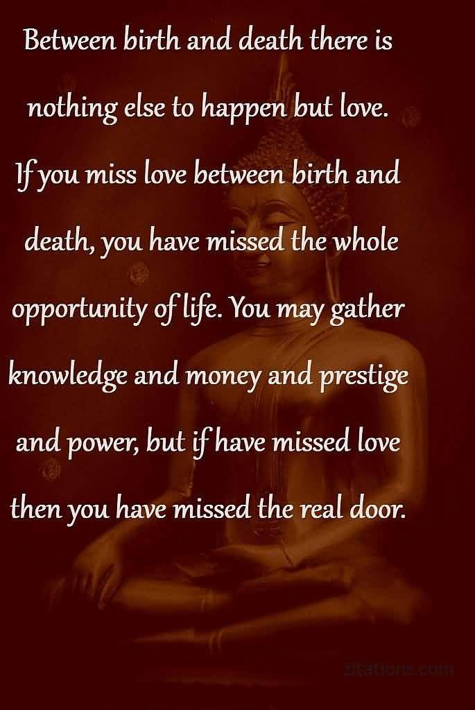 Buddhist Quotes On Death Awesome 20 Buddha Quotes On Death And Life  Pictures U0026 Pics Quotesbae