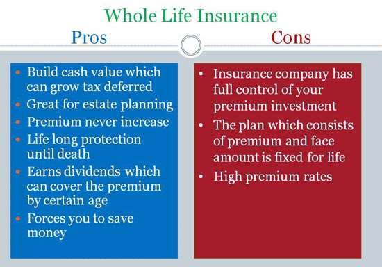 Comparing Life Insurance Quotes Best Compare Life Insurance Quotes 07  Quotesbae