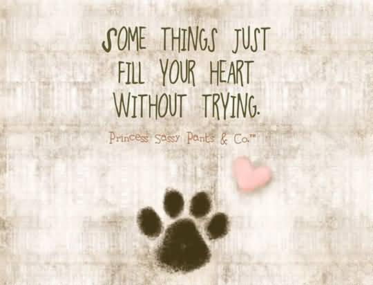 Dog Love Quotes Custom 20 Dog Love Quotes Sayings Pictures And Photos  Quotesbae