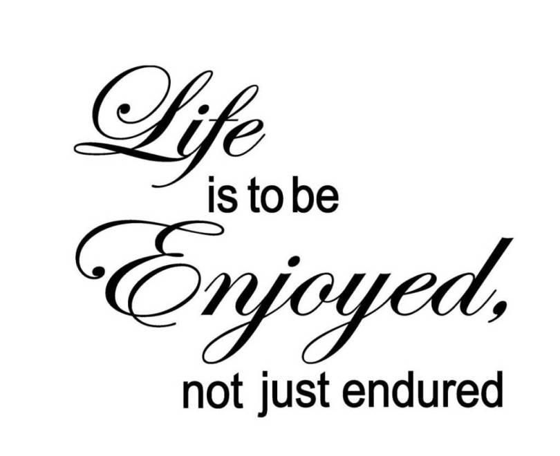 Enjoying Life Quotes Entrancing 20 Enjoying Life Quotes Sayings Images & Photos  Quotesbae