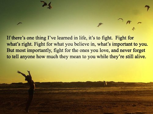 Fight For What You Love Quotes Inspiration Fight For What You Love Quotes 19  Quotesbae