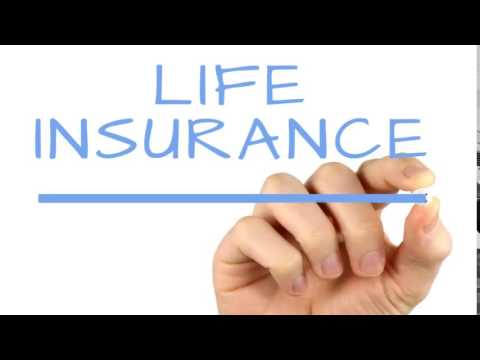 Free Life Insurance Quote Amazing Free Life Insurance Quote 05  Quotesbae