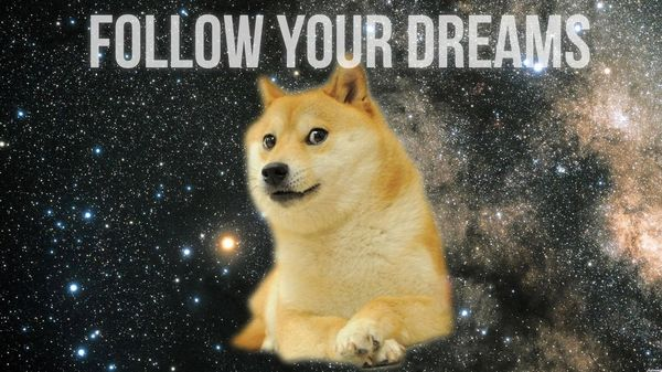 Funny Doge Pictures Joke