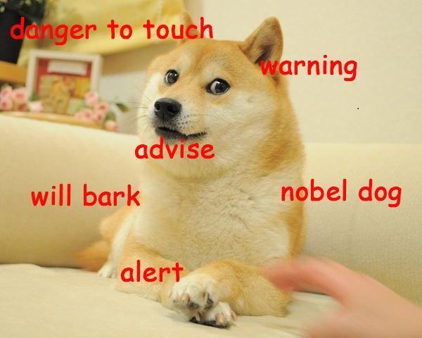 Funny Doge Sayings Photos
