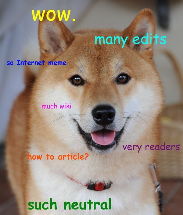 Funny Doge Sayings Picture